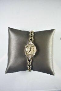 Platinum-and-Diamonds-Ladies-Watch-by-Hamilton-263654475861-4