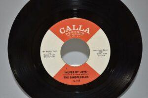 45-Funk-Soul-The-Sandpebbles-Never-My-Love-Near-Mint-263572989255-2