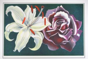 SIGNED-NUMBERS-PRINT-SERIGRAPH-LOWELL-NESBITT-LILY-ROSE-XVXXV-1974-191988133702-2
